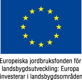 EU Flagga 2